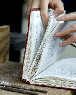 Novels/ Creative Works